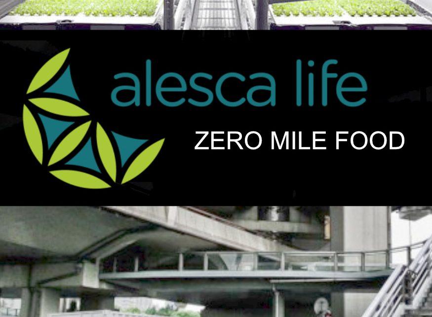 Alesca Life, Creators of Tomorrow, Social Impact Documentary, Social Impact Producer Maximilian Haidbauer, Branded Content, Red Bull TV, Red Bull Media House